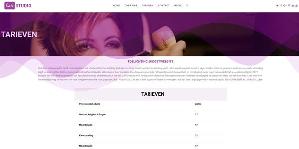 WEBSITE-VOOR-KAPPER-TARIEVEN-600X300